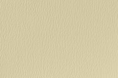 US-385 Parchment