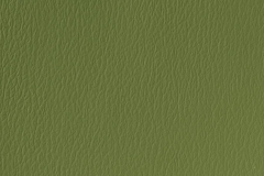 US-529 Olive Green