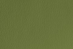 US-529 Olive Green