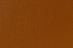 US-377 Cinnamon