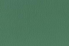 US-434 China Green