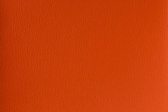 US-372 Mandarin Orange